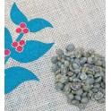 Sumatra Mandheling gr 1 green coffee beans (2kg)